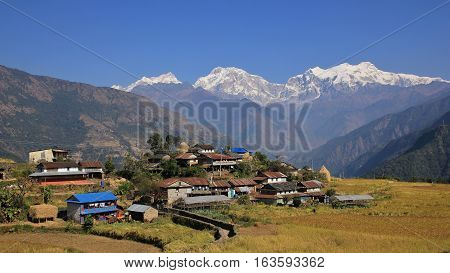 Sikle rural village in the Annapurna Conservation Area. Snow capped Manaslu and other mountains of the Mansiri Himal range.