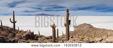 Panorama of Salar de Uyuni as seen from Isla Incahuasi Bolivia