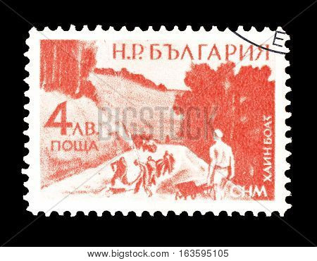 BULGARIA - CIRCA 1949 : Cancelled postage stamp printed by Bulgaria, that shows Road construction.