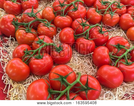 Bunches of ripe red tomatoes laying in a fruit box ready for sale at farmers market.