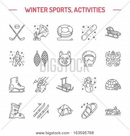 Ski, snowboard, skates, tubing, ice kiting, climbing and other winter sport line icons. Outdoor activity thin linear pictogram such as camping, igloo building, snow angel making. Equipment rent signs