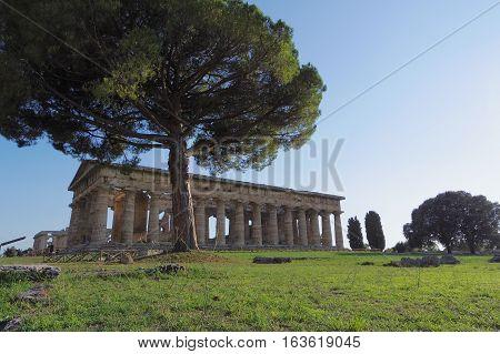 Ancient Greek Temple In Paestum, Italy.