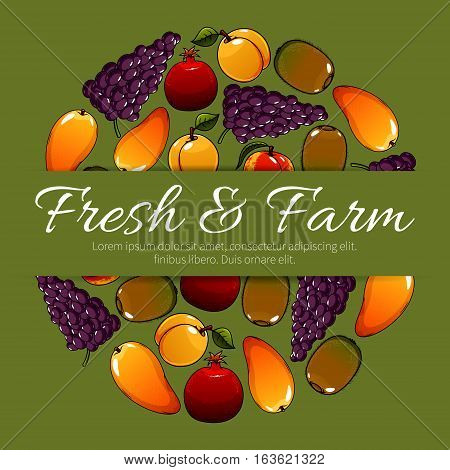 Fresh farm fruits. Vector fruit poster with ripe fruit harvest of juicy tropical mango and exotic kiwi, red grape with pomegranate, sweet apricot or peach. Delicious and healthy organic fruits