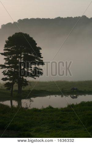 Landscape Vista South Lands0004