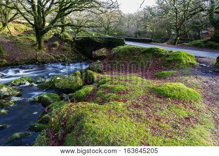 Stream And Old Bridge, Dartmoor.