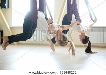 Two young attractive yogi women doing aerial yoga practice in purple hammocks in fitness club. Beautiful females working out in class, performing antigravity yoga