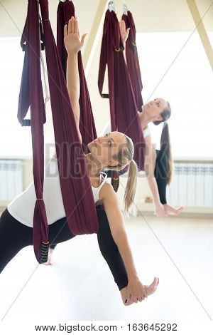 Two young yogi women doing aerial yoga practice in purple hammocks in fitness club. Beautiful females working out, performing aero yoga. Variation of Utthita parsvakonasana, Extended Side Angle pose