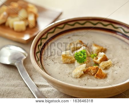 Soup and dried crusts on the table studio shot