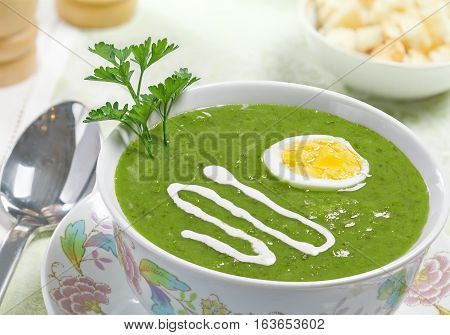 Cream soup with egg and sour cream on the table studio shot