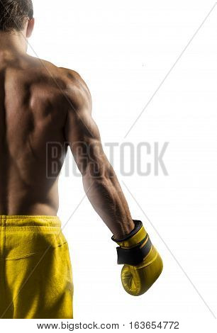 Strong muscular boxer in gold boxing gloves