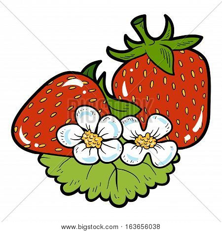 Color image with vector cartoon berry, Strawberry
