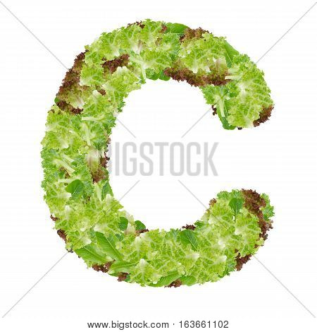 Letter C alphabet with hydroponics leaf ABC concept type as logo isolated on white background