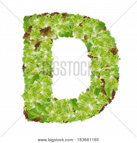 Letter D alphabet with hydroponics leaf ABC concept type as logo isolated on white background