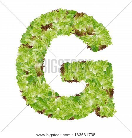 Letter G alphabet with hydroponics leaf ABC concept type as logo isolated on white background