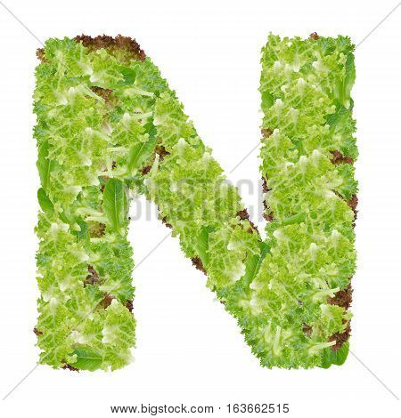 Letter N alphabet with hydroponics leaf ABC concept type as logo isolated on white background