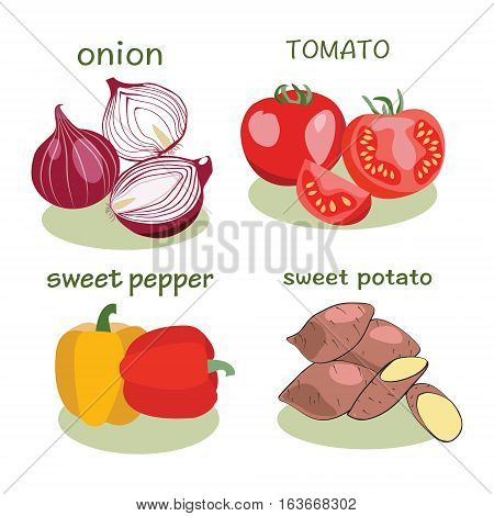 Vegetable icon in flat style Isolated object. Tomato pepper onion sweet potato logo. Vegetable from the farm. Organic eco food illustration.