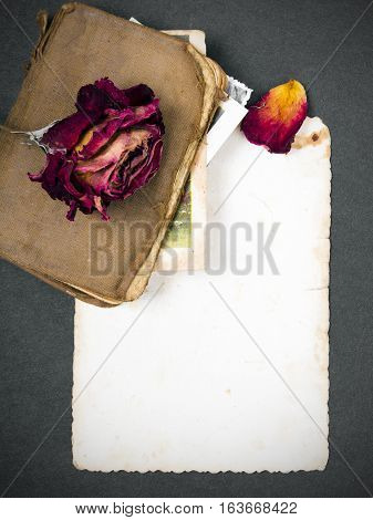 dried rose old book and empty photograph as a romance metaphor