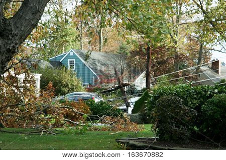 Trees and wires are down all around a neighborhood in Babylon village after Super storm sandy