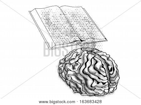 book and mind isolated on a white background