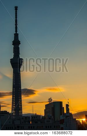Morning Sunrise With Silhouette Of Tokyo Skytree