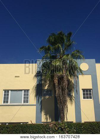 Palm Tree Art Deco District, Miami, Florida