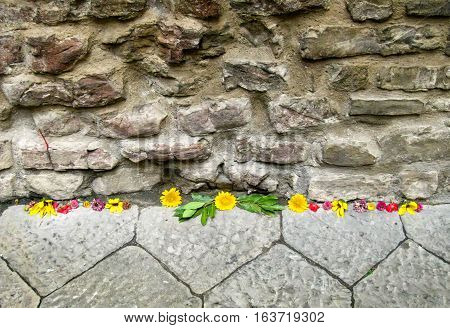 Random flowers scattered along a stone wall
