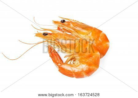 two yellow prawns on a white background