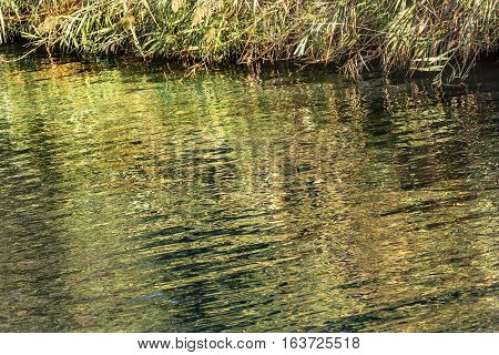 Jordan River Yardenit Baptism Site Green Water Reflection Abstract Israel. Famous site where allgedly Jesus was baptised by John the Baptist