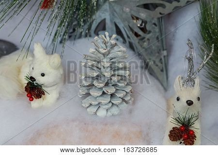 Pine cones on Christmas decorations background plant beautiful nature