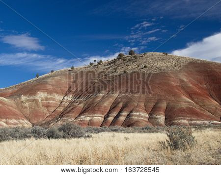 A hill with layers of reds and browns and trees wild grasses and sagebrush on a winter day in the Painted Hills Unit of the John Day Fossil Beds in Eastern Oregon.