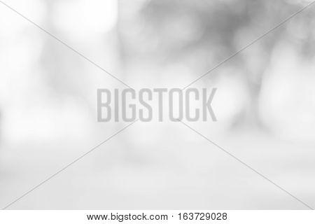 backdrop white bokeh blurred background. grey abstract background. soft backdrop of nature abstract background. used for wallpaper or background