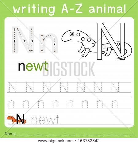 Illustrator of writing a-z animal n for kid