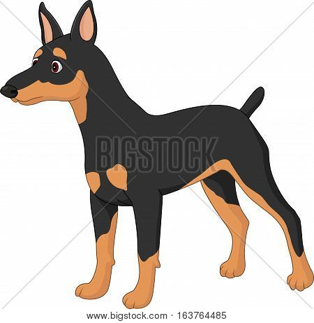 Vector illustration of Cartoon dog Miniature Pincher