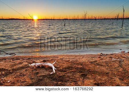 View of sunset at Truman Lake located in the Lake of the Ozarks area of Missouri. Image has driftwood in the foreground on the shore
