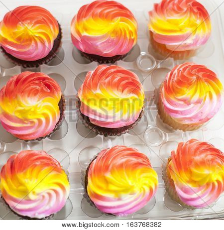 Tray of chocolate cupcakes with multicolored icing