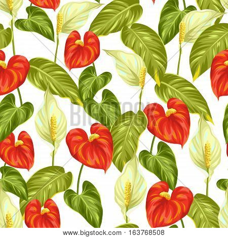Seamless pattern with flowers spathiphyllum and anthurium.