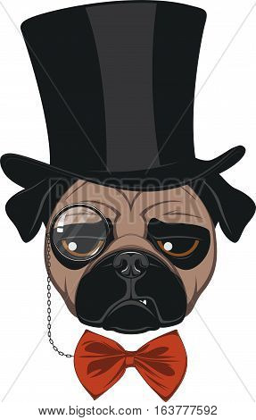 Vector illustration of funny pug wearing a hat, on a white background