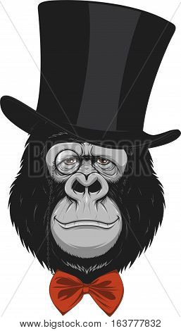 Vector illustration of funny gorilla with a hat on a white background