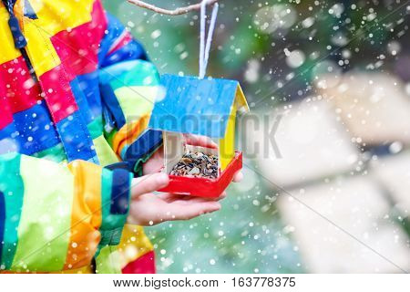Little kid feeding birds in winter. Child hanging colorful selfmade bird house on tree on frosty cold day. Toddler in colorful wam clothes. Selective focus on hands and feeder with seeds