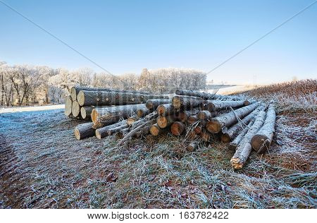 Winter countryside with frozen logs and view with frozen field trees and grass