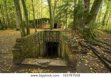 Wolf's Lair Adolf Hitler's Bunker in Poland. First Eastern Front military headquarters in World War II. Complex was blown up and abandoned on 1945. Autumn chaparral grown ruins trees leaves.