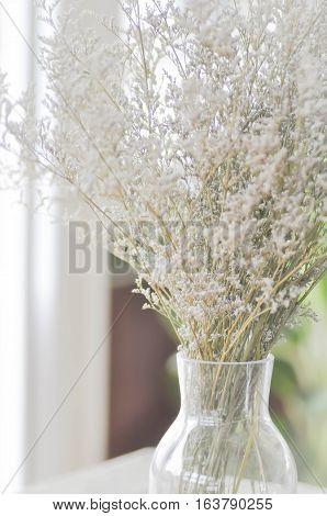 purple caspia flowers in vase or caspia flower