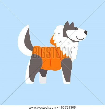 Husky Dog In Padded Coat, Arctic Animal Dressed In Winter Human Clothes Cartoon Character. Cold Region Fauna And Warm Clothing Funky Vector Illustration.