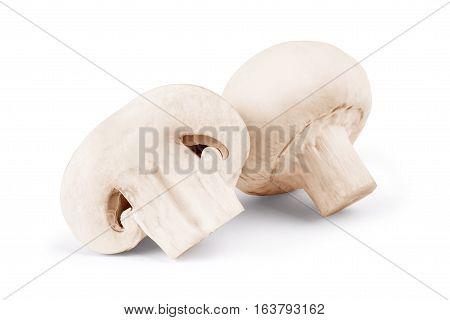 Champignon mushrooms on white backround fungi, natural, cuted, organic, horizontal, studio