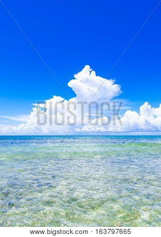 Open Blue Sea Cumulus Clouds