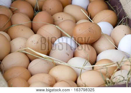 Basket full of brown and white eggs.
