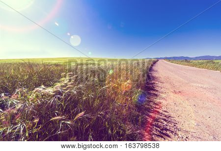 Green grass and empty road sunset.Adventure ramble concept.Nature sunset scenery and road