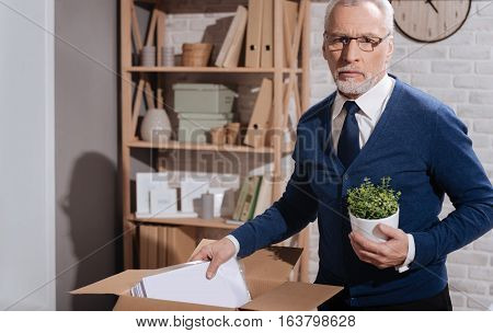 My entire career in one box. Upset desperate mature executive holding his favorite plant and putting documents in the box because his contract being terminated