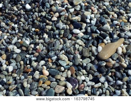 Background of pebbles of different sizes and colors on the beach.