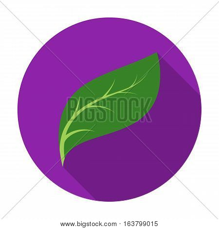 Eco leaf icon in flat design isolated on white background. Bio and ecology symbol stock vector illustration.